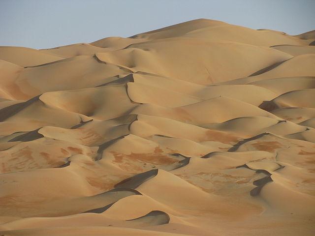 Liwa Desert sand surfing