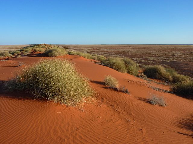 Things to do in Simpson Desert