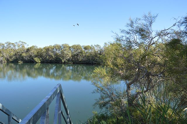 Water Springs of Alice Springs