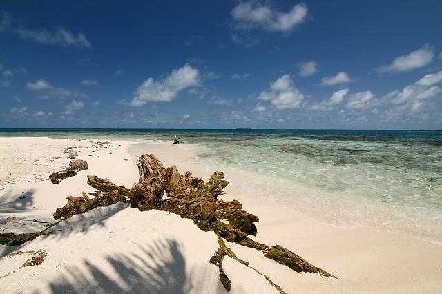 Silk Caye Marine Reserve